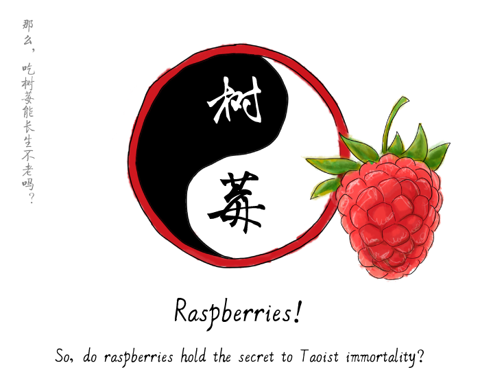 jason_pym-raspberries03